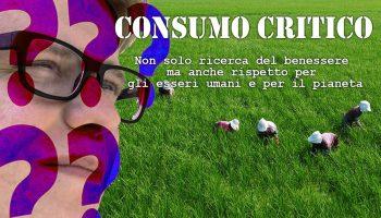 Cosa si intende per consumo critico?