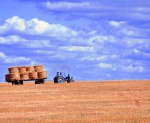 """La modernizzazione dell'agricoltura e l'origine della """"filiera lunga"""""""